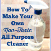 Thumbnail image for How to Make a Non-Toxic All-Purpose Cleaner