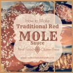 Savory Mole Sauce- a traditional red mole