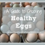 A Guide to Choosing Healthy Eggs