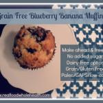 Gluten Free, Grain Free Blueberry Banana Muffins