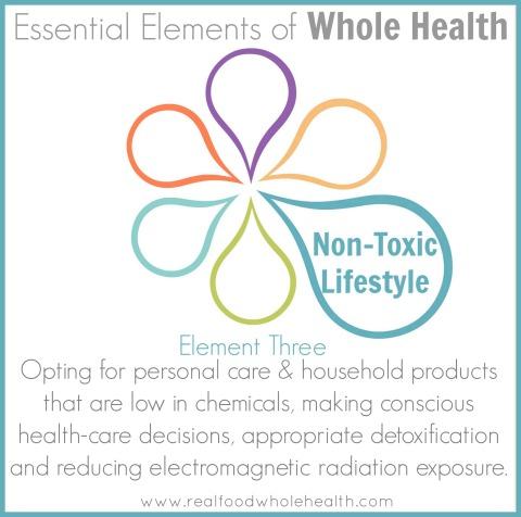 NonToxic Lifestyle Element HEADER