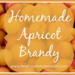Homemade Apricot Brandy