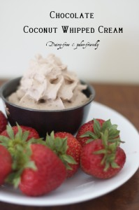 Chocolate-Coconut-Milk-Whipped-Cream-is-a-rich-and-delicious-treat-Dairy-free-and-Paleo-friendly