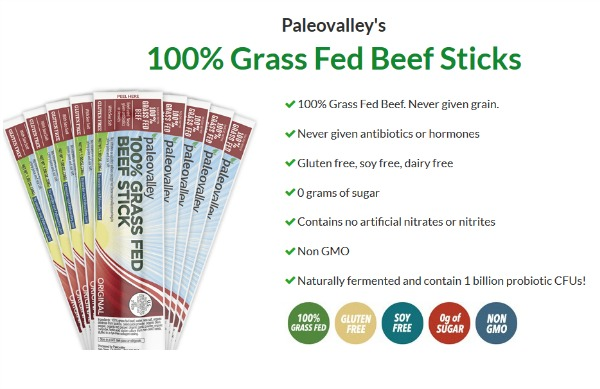 Healthy PaleoValley Beef Sticks